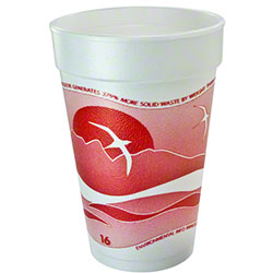 Dart® Horizon® Foam Cup - 16 oz., Cranberry