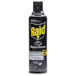 Raid® Wasp & Hornet Killer - 14 oz.