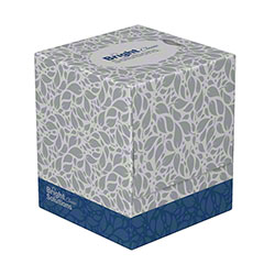 BSL Classic Cube Box 2-Ply Facial Tissue - 90 ct. Box