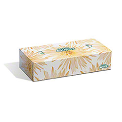 White Swan® 2 Ply White Facial Tissue - 100 ct.