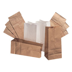 20# Grocery Bag 500/cs