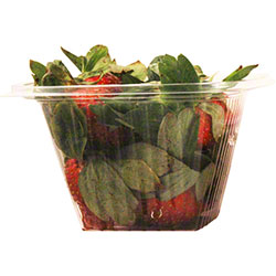 World Centric Biodegradable Deli Rect. Container - 12 oz.