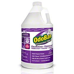Clean Control OdoBan® Deodorizer Disinfectant - Gal.