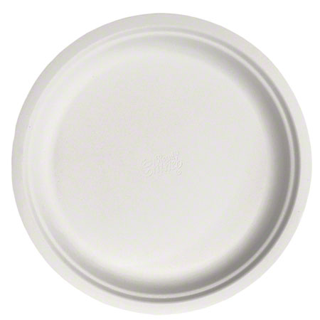"22011 10.5"" CHINETTE DINNER PLATES 500/CS FS2130"
