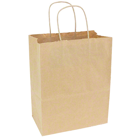 89204 PAPER SHOPPING BAG W/HANDLES TEMPO 250/CASE