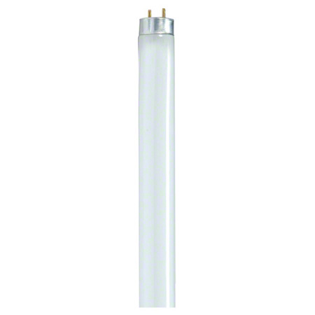 F32 T-8 841 TL841/SPX41 4′ LIGHT BULB 30/CS